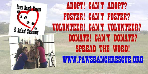 Paws ranch Rescue About Us banner